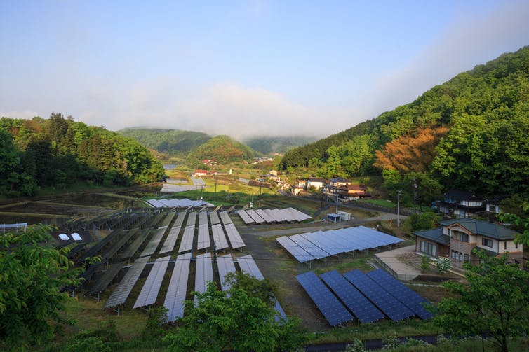 Solar panels reflecting the early morning sun in rural Japan. Osaze Cuomo/Shutterstock