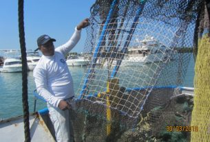 A prototype of a net that may prevent the capture of fish during industrial shrimp trawling. Image courtesy of INVEMAR.