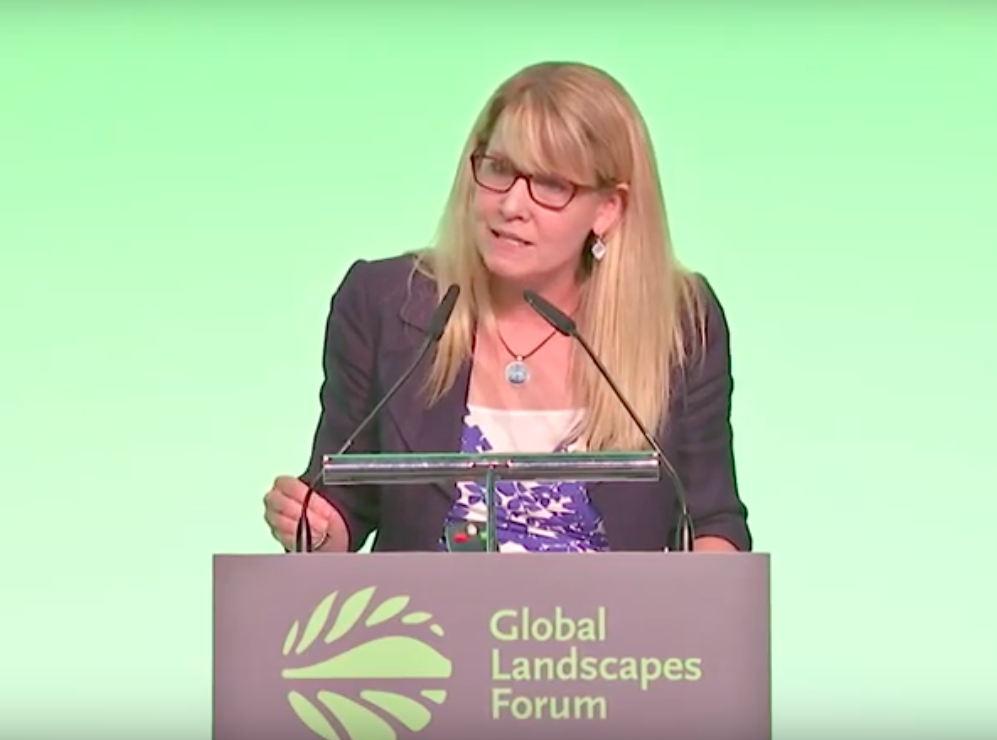 Jennifer Morris, Conservation International president, speaks at the Global Landscapes Forum in Bonn June 22, 2019. (© CIFOR)